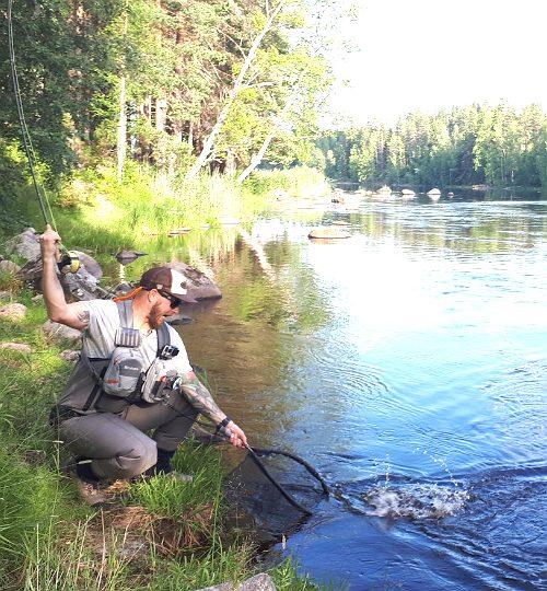 Vilppulankoski kalastus haavi saalis